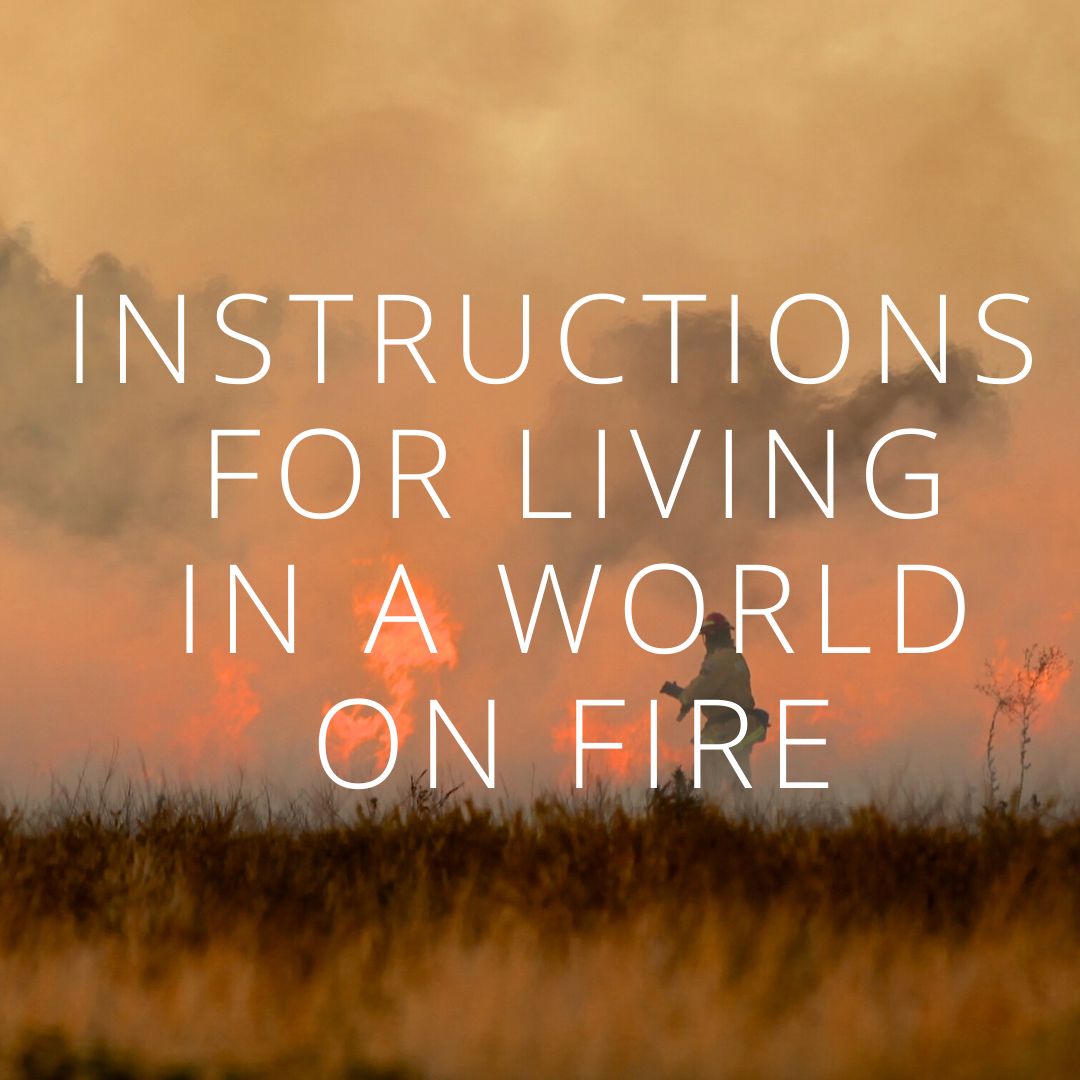 INSTRUCTIONS FOR LIVING IN A WORLD ON FIRE